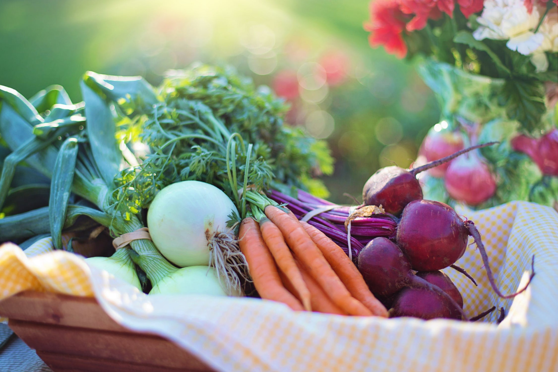 Think Organic Vegetable Gardening is Hard? Follow this Guide